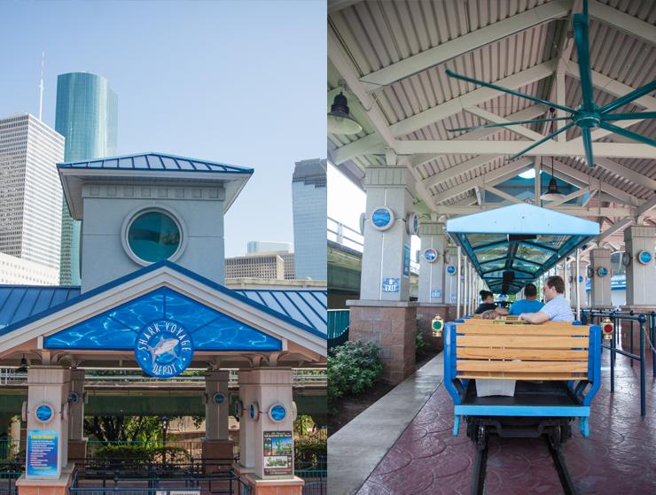 Downtown Aquarium train shark voyage